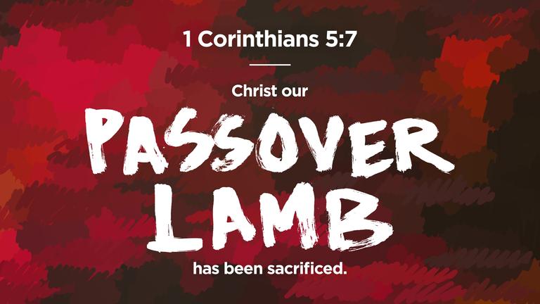 passover lamb has been sacrificed.png