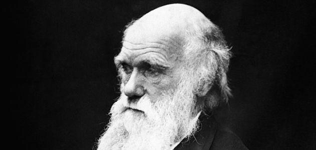 Darwin Portrait