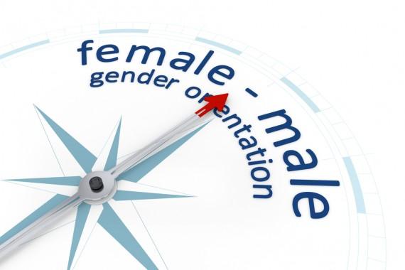 Gender Continuum Banner