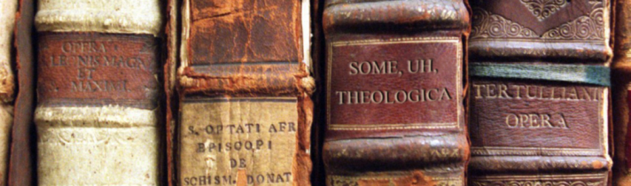 Old Theology Book Spines
